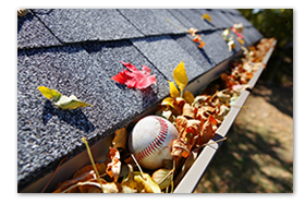 leaves and baseball in Gutter